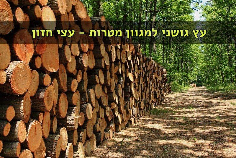 עץ גושני למכירה במחיר אטרקטיבי עצי חזון