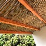 גגות עץ
